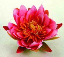 Selyemvirág, pink tavirózsa, 16 cm