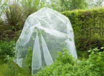 Rovar elleni védőháló (gyümölcs-almamoly) 5,2x5mx100m átlátszó3x6mm 60g/m2