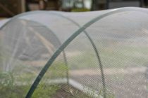 Rovar elleni védőháló zöldségeskertekhez, 2x5m átlátszó1x1mm 38g/m2