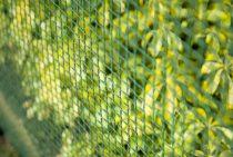 Drótkerítés, 5x5mm ,1x3m zöld